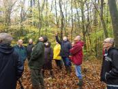 Se former à la gestion durable des forêts