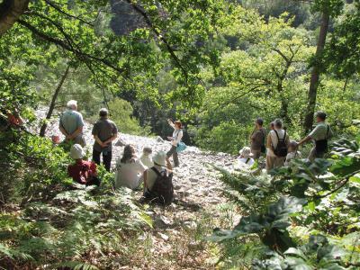 Histoires de roches : parcourons les temps