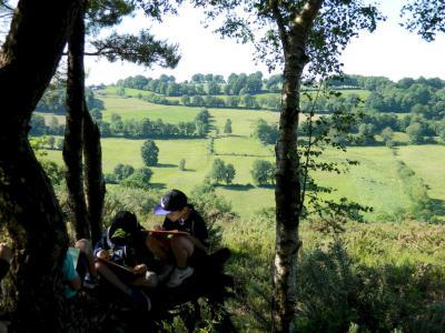 Botaniste en herbe dans la lande