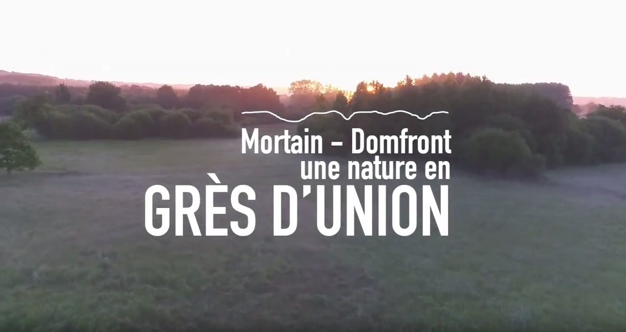 Websérie Grès d'union